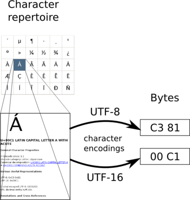 Character encodings map from a character repertoire to byte sequences